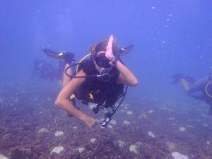 PADI AWARE Shark conservation