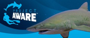 AWARE shark conservation