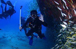 Diving in Lembongan