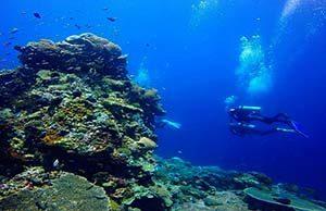 Blue Corner Nusa Lembongan