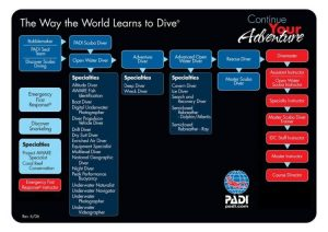 PADI dive career
