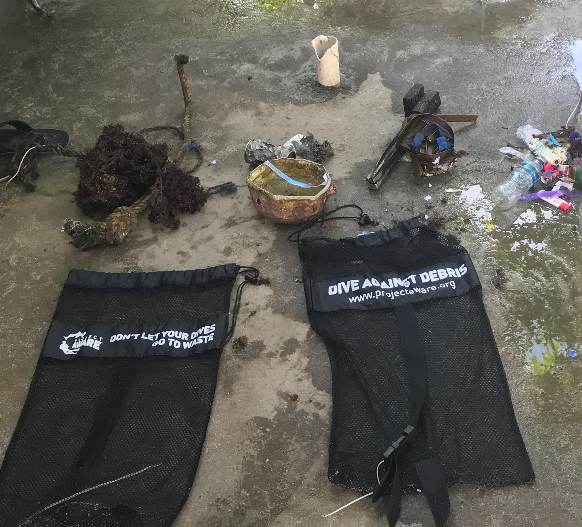 Humans are the biggest contributing factor to the destruction of our oceans. Divers can help by picking up trash