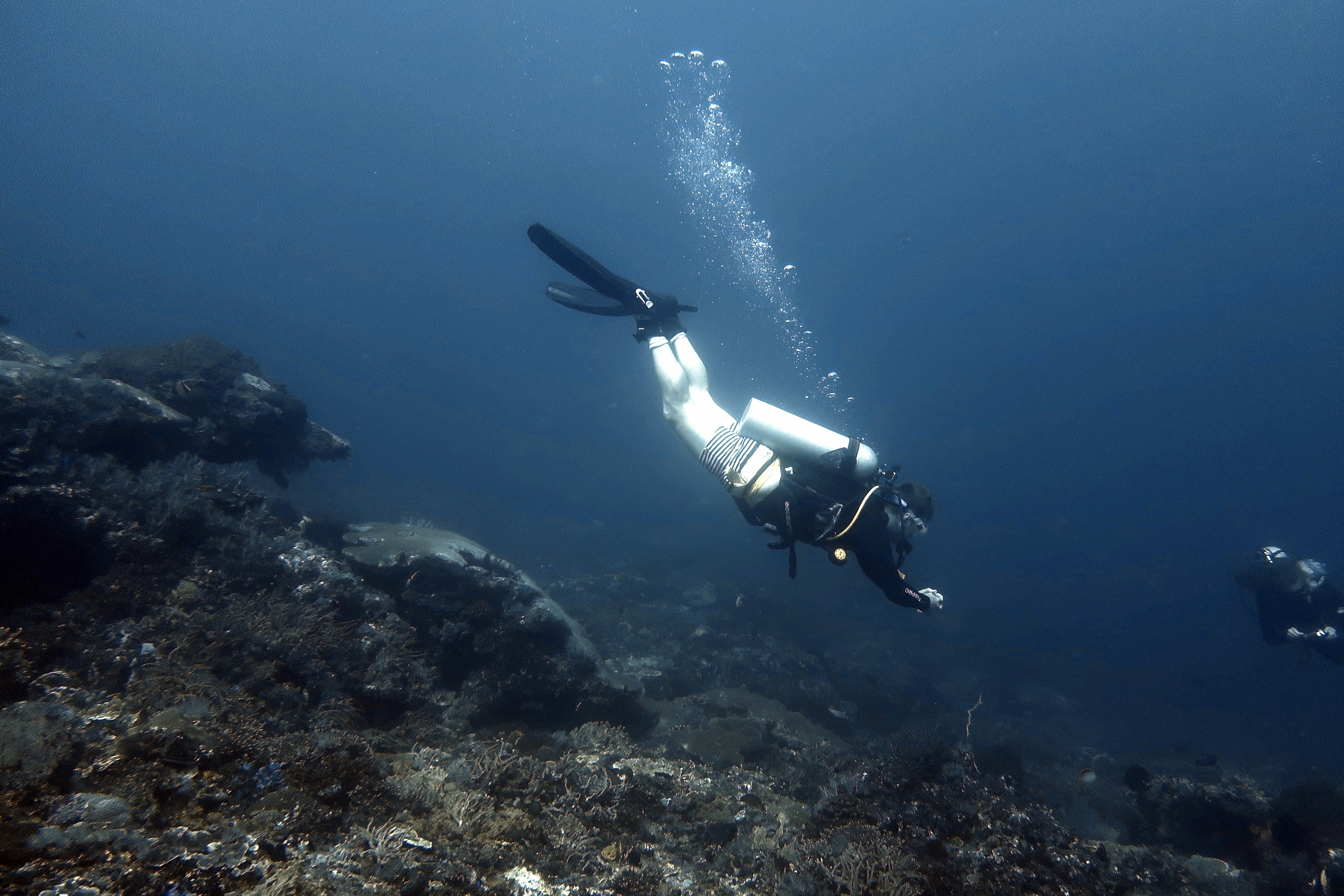 struggling to go down diving scuba center asia