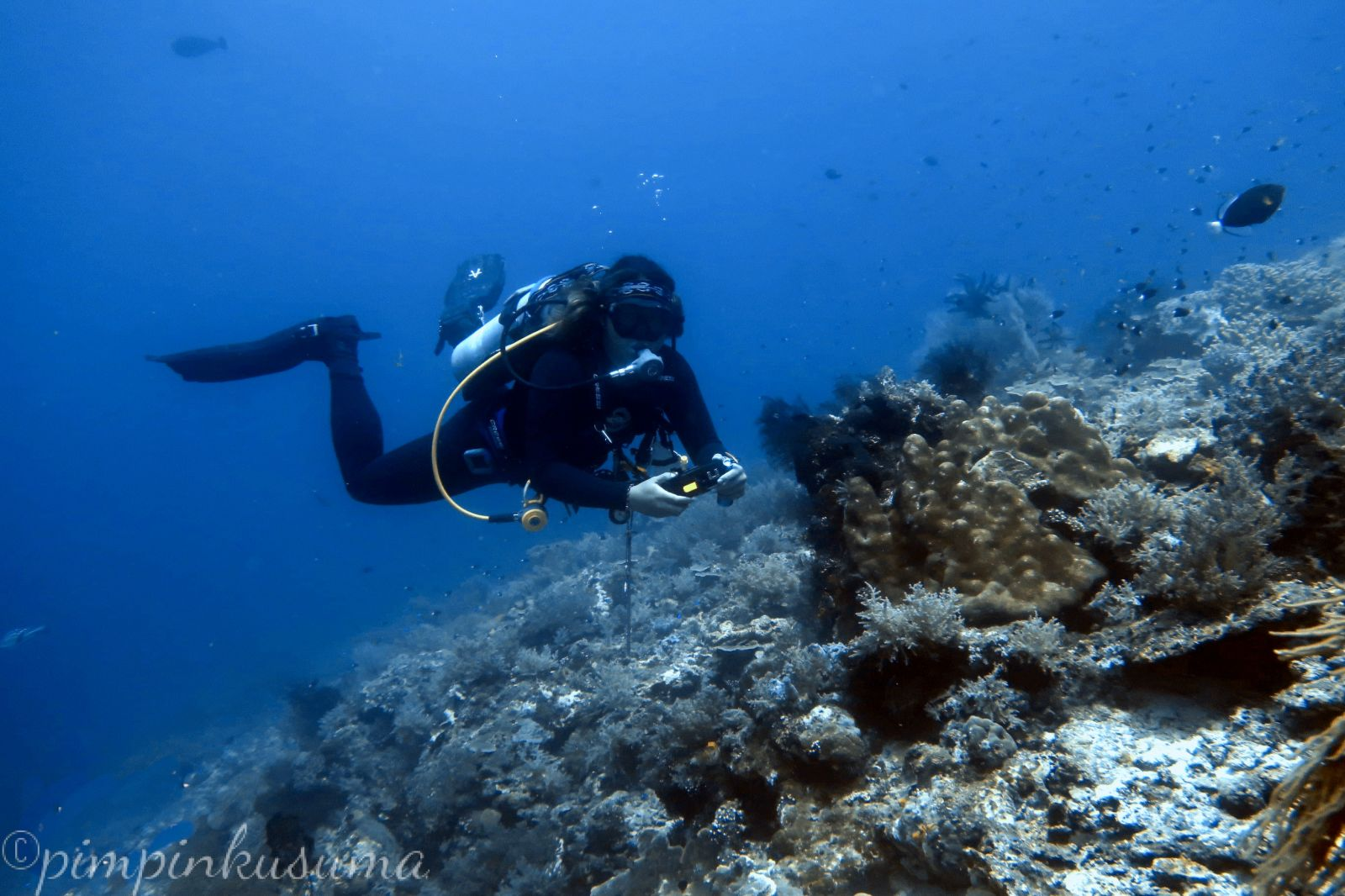 buoyancy control while scuba diving